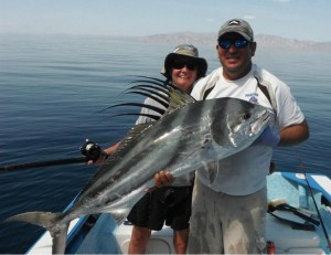 Beautiful roosterfish, caught of La Ventana in Baja, Mexico, est. 45 pounds.