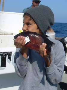 Young anger with a sheephead